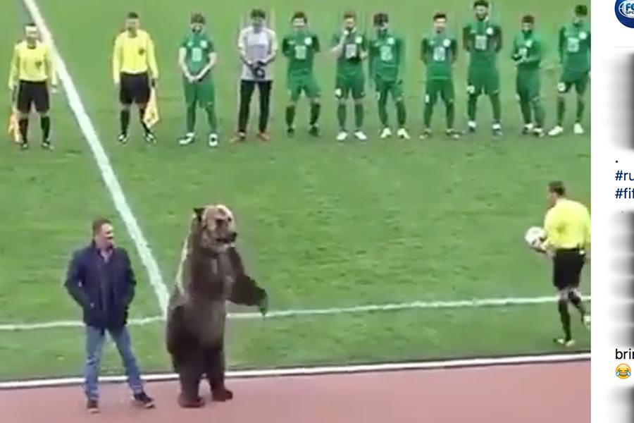 ロシアリーグの試合前に登場した熊が話題に(画像はスクリーンショットです)