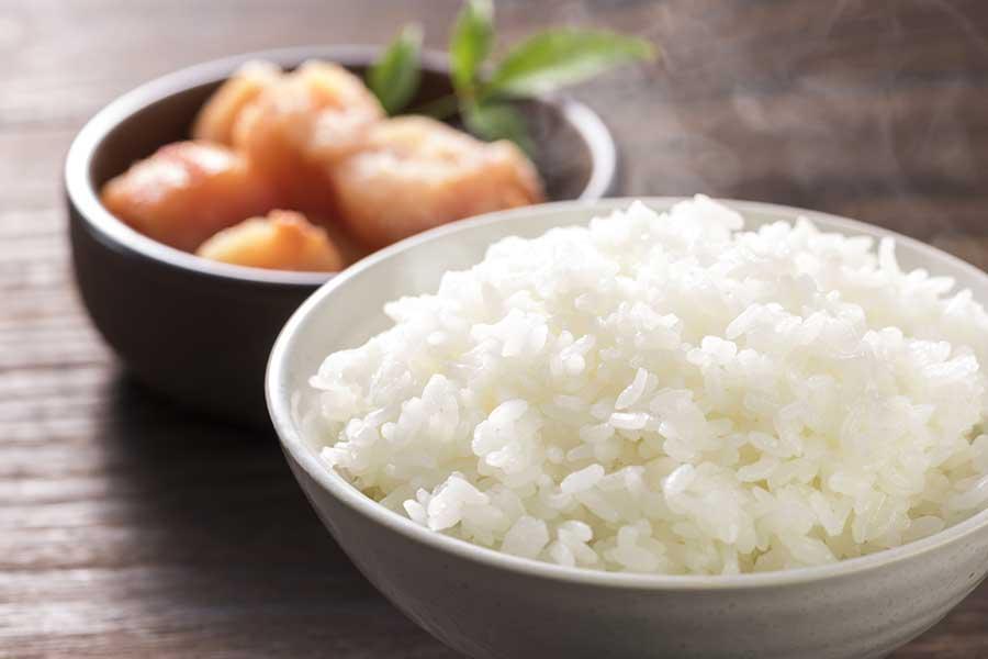 今回のテーマは「スポーツ食における米の大切さ」について