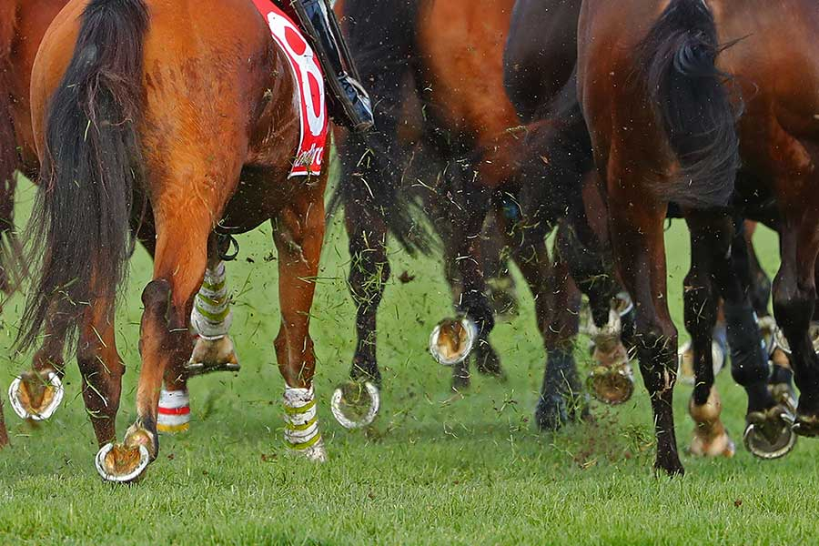 海外競馬の障害レースで起きた珍事とは(写真はイメージです)【写真:Getty Images】
