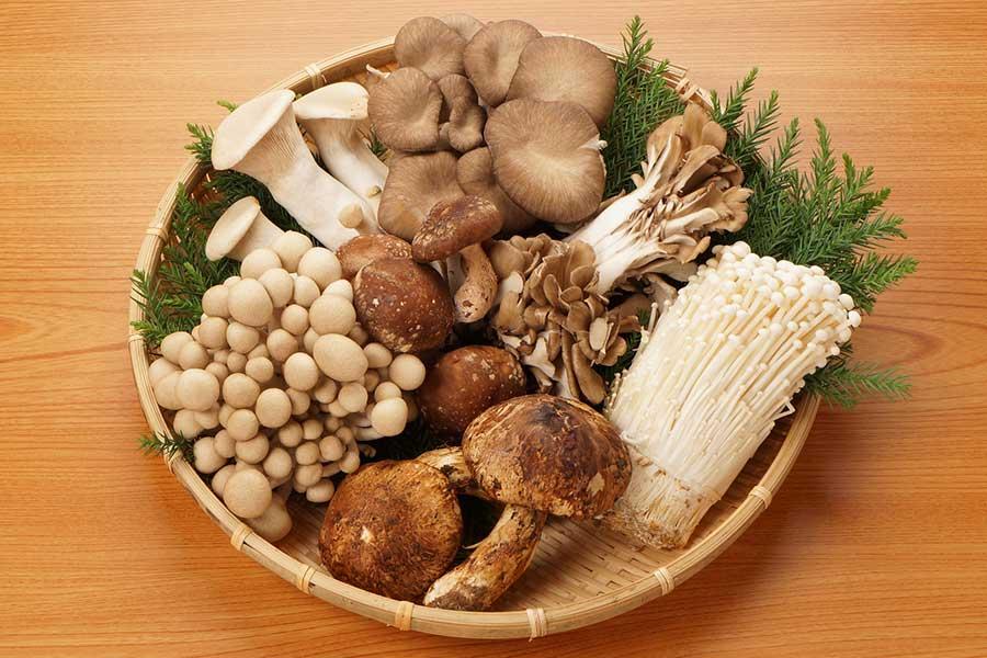 風邪を引きやすいこれからの季節、積極的に摂ってほしいのが「きのこ類」を紹介